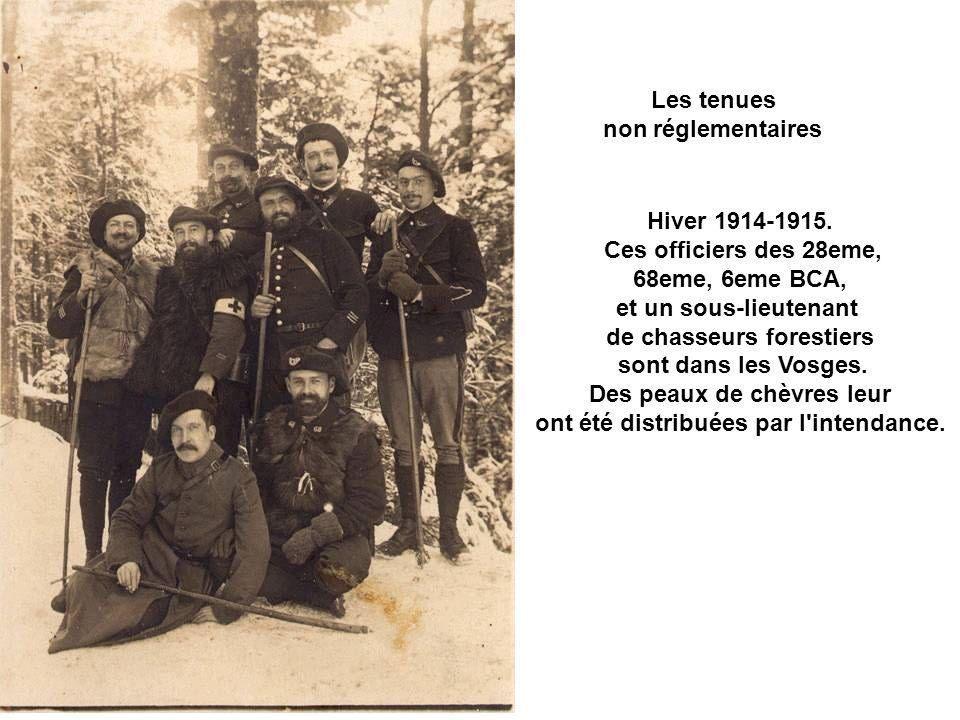 de chasseurs forestiers sont dans les Vosges.