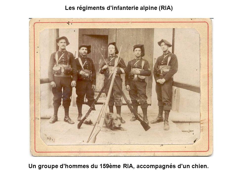 Les régiments d infanterie alpine (RIA)