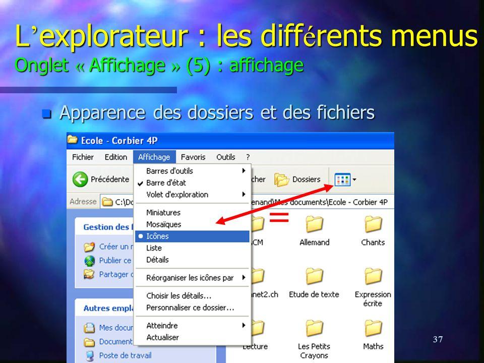 L'explorateur : les différents menus Onglet « Affichage » (5) : affichage