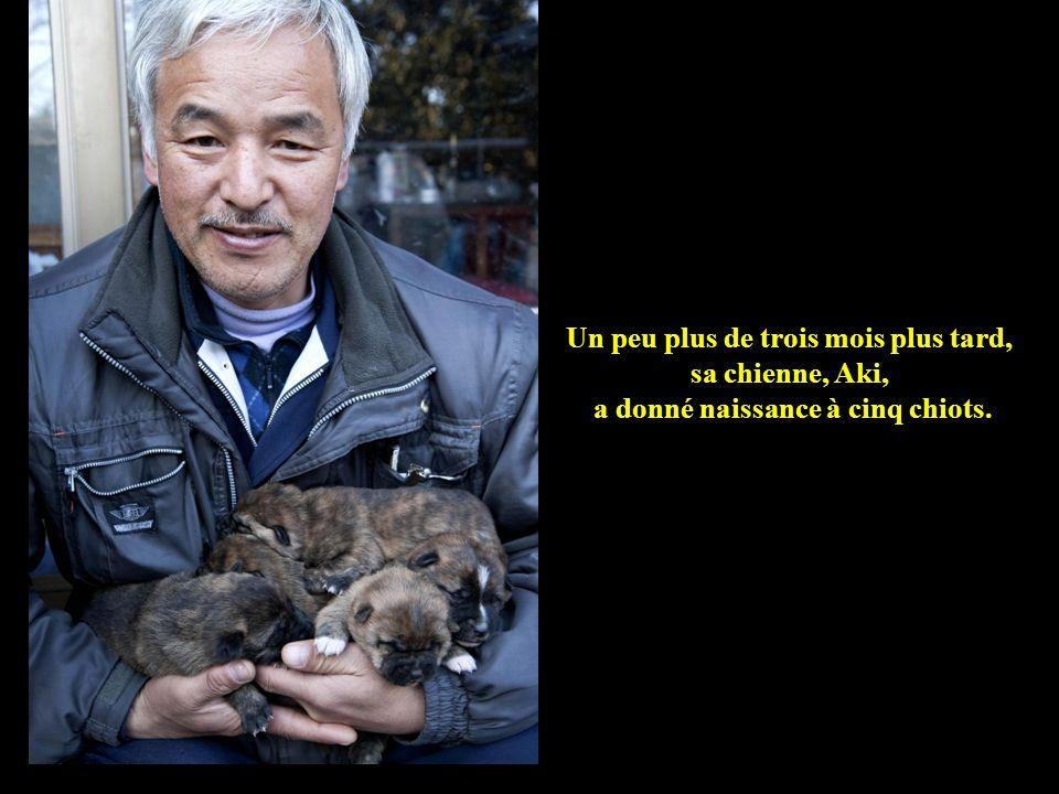 Un peu plus de trois mois plus tard, sa chienne, Aki, a donné naissance à cinq chiots.
