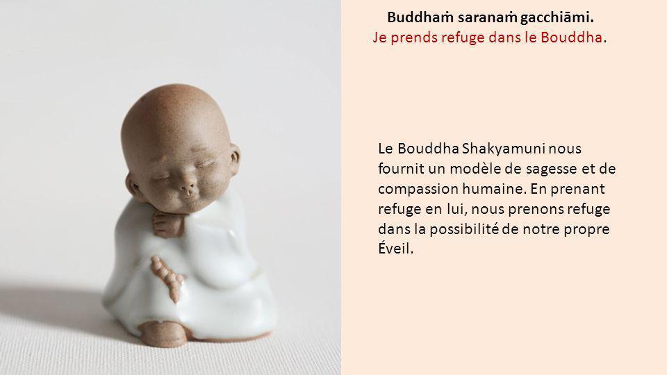 Buddhaṁ saranaṁ gacchiāmi. Je prends refuge dans le Bouddha.