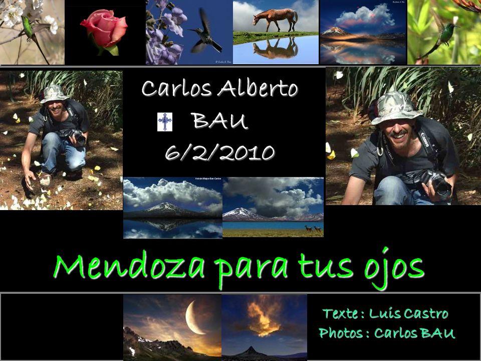 Mendoza para tus ojos En sa mémoire Carlos Alberto BAU 6/2/2010