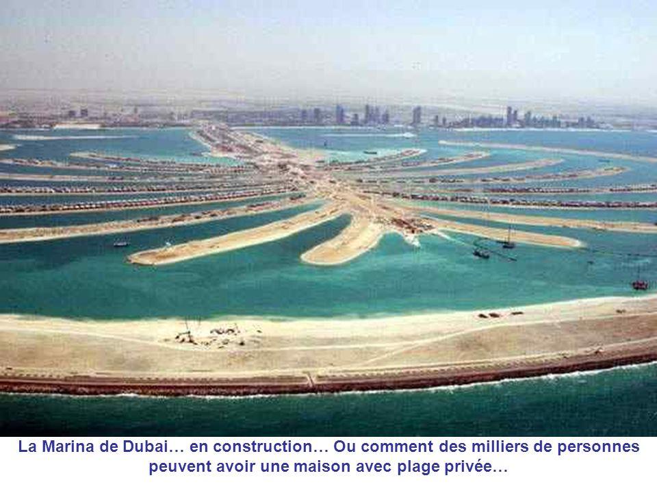 La Marina de Dubai… en construction… Ou comment des milliers de personnes peuvent avoir une maison avec plage privée…