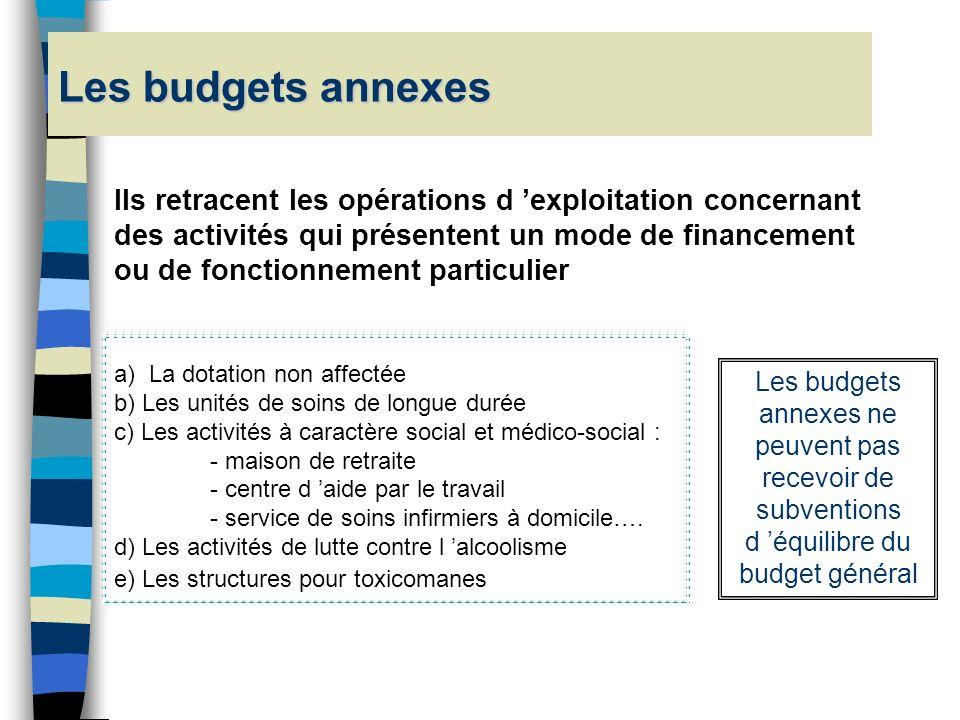Les budgets annexes