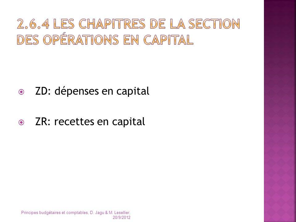 2.6.4 Les chapitres de la section des opérations en capital