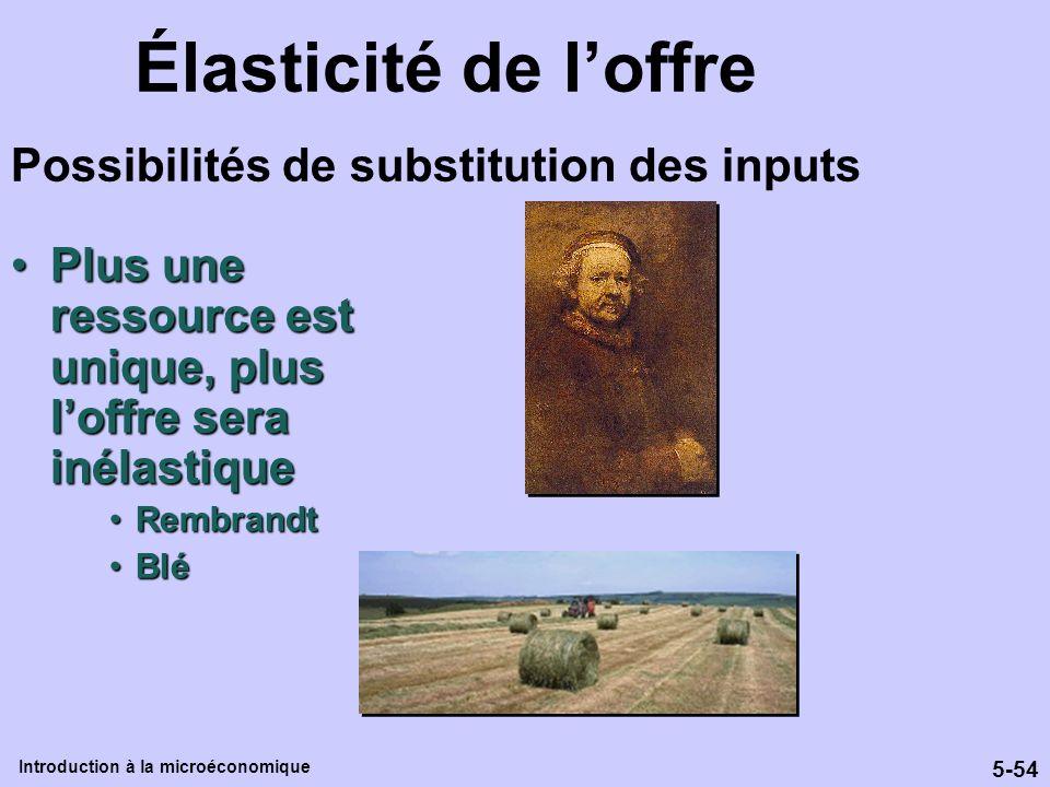 Élasticité de l'offre Possibilités de substitution des inputs