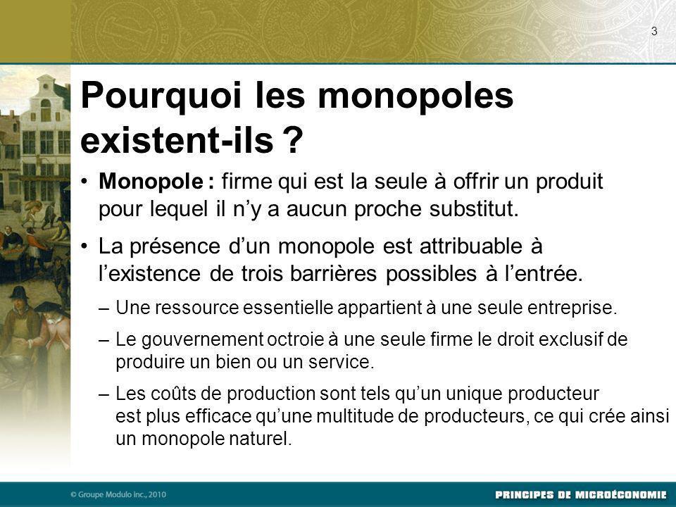 Pourquoi les monopoles existent-ils