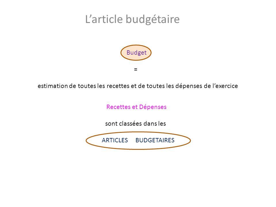 L'article budgétaire Budget =