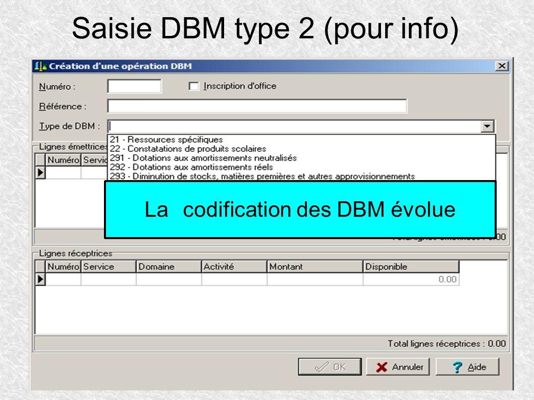 Saisie DBM type 2 (pour info)