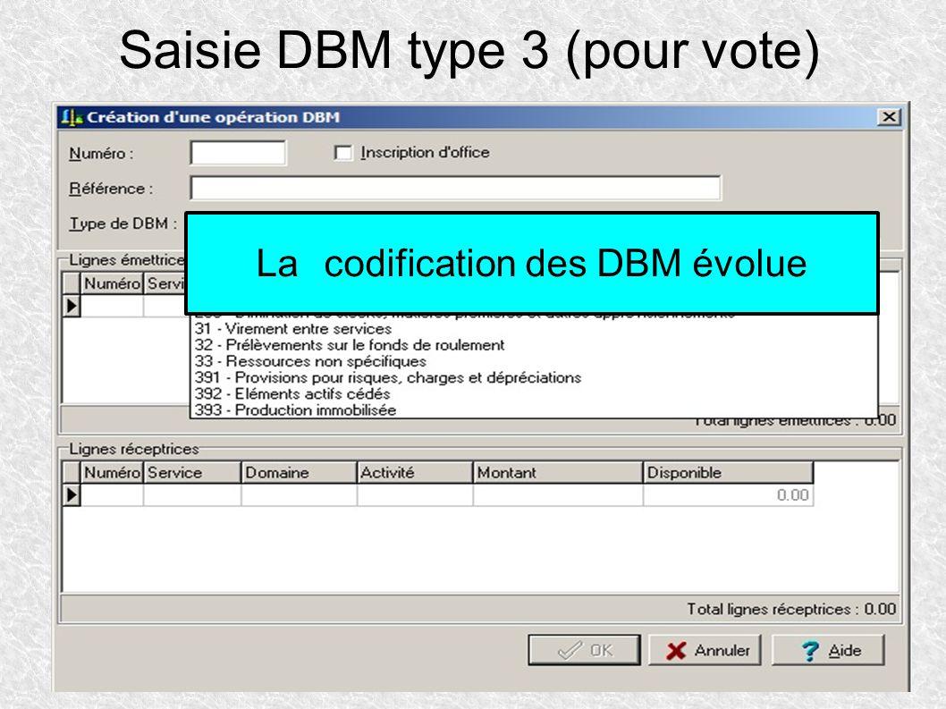 Saisie DBM type 3 (pour vote)