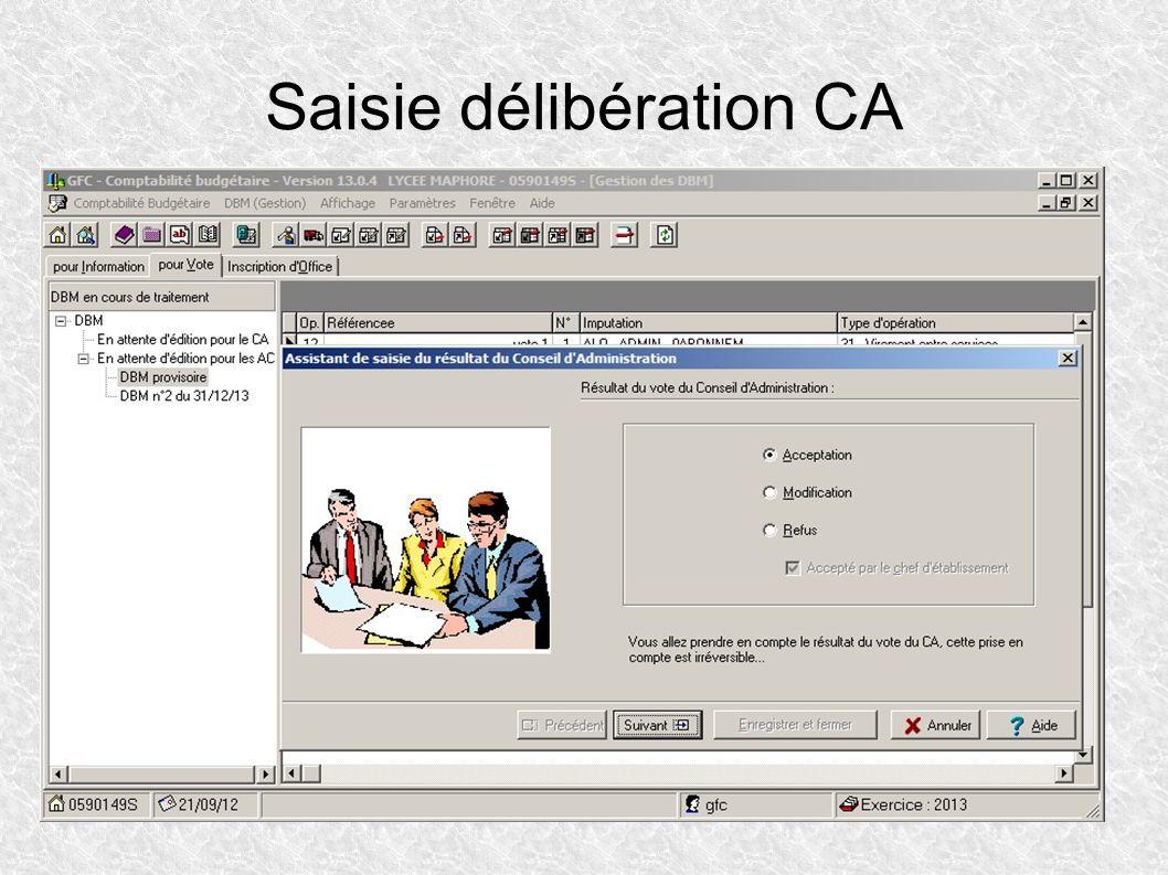 Saisie délibération CA