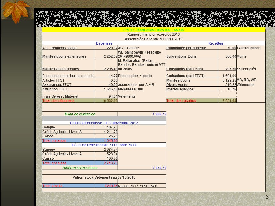 CYCLO-RANDONNEURS BALLANAIS Rapport financier exercice 2013