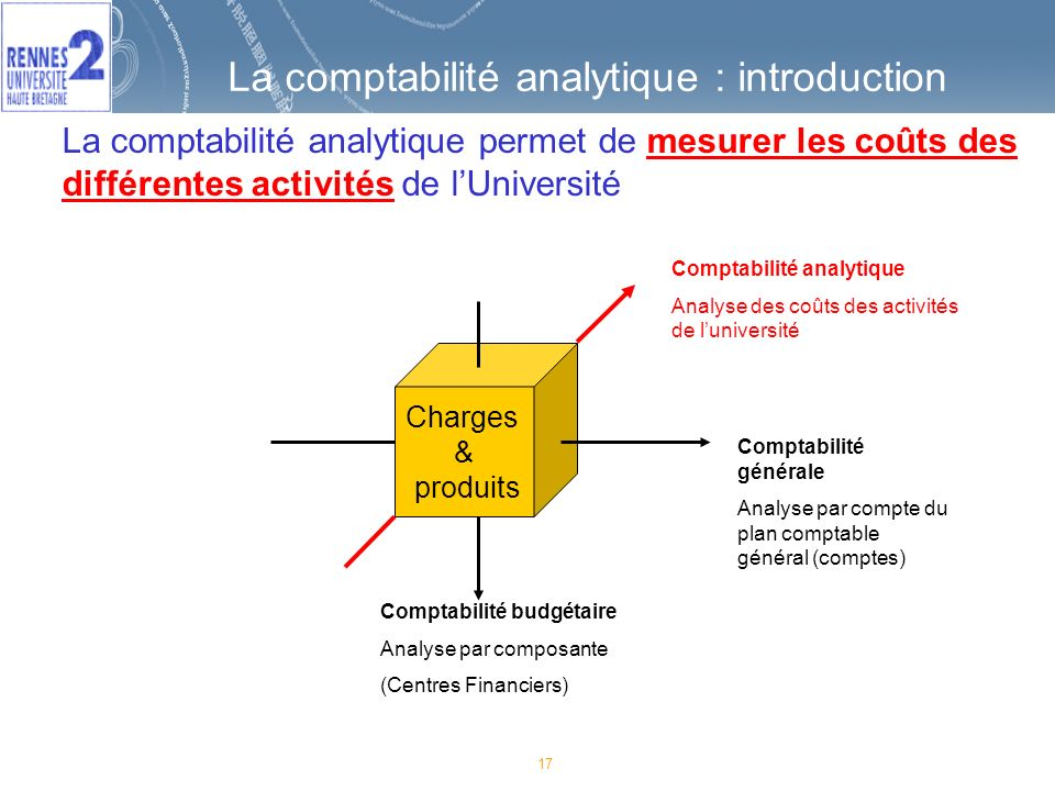 La comptabilité analytique : introduction