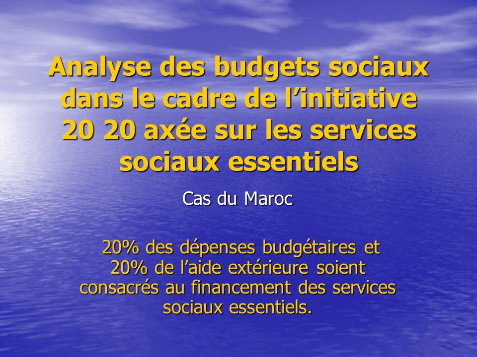 Analyse des budgets sociaux dans le cadre de l'initiative 20 20 axée sur les services sociaux essentiels