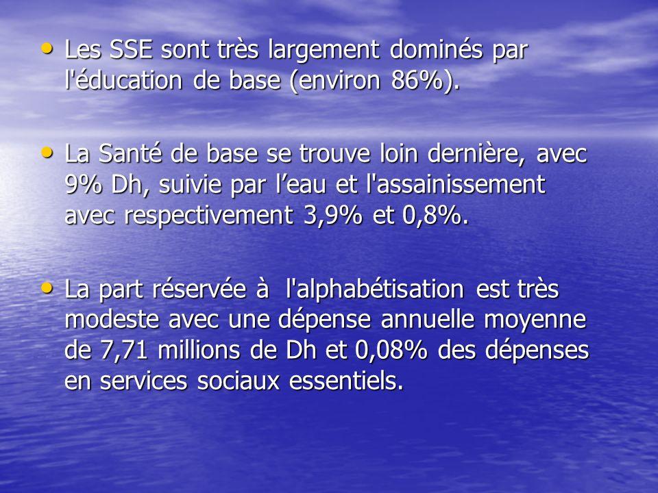 Les SSE sont très largement dominés par l éducation de base (environ 86%).