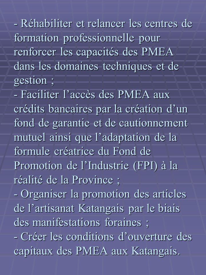- Réhabiliter et relancer les centres de formation professionnelle pour renforcer les capacités des PMEA dans les domaines techniques et de gestion ; - Faciliter l'accès des PMEA aux crédits bancaires par la création d'un fond de garantie et de cautionnement mutuel ainsi que l'adaptation de la formule créatrice du Fond de Promotion de l'Industrie (FPI) à la réalité de la Province ; - Organiser la promotion des articles de l'artisanat Katangais par le biais des manifestations foraines ; - Créer les conditions d'ouverture des capitaux des PMEA aux Katangais.