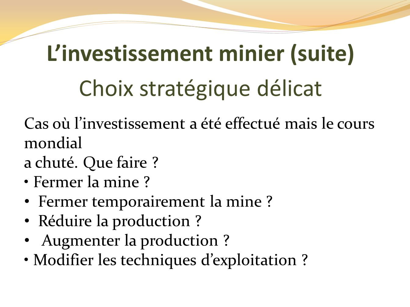 L'investissement minier (suite)