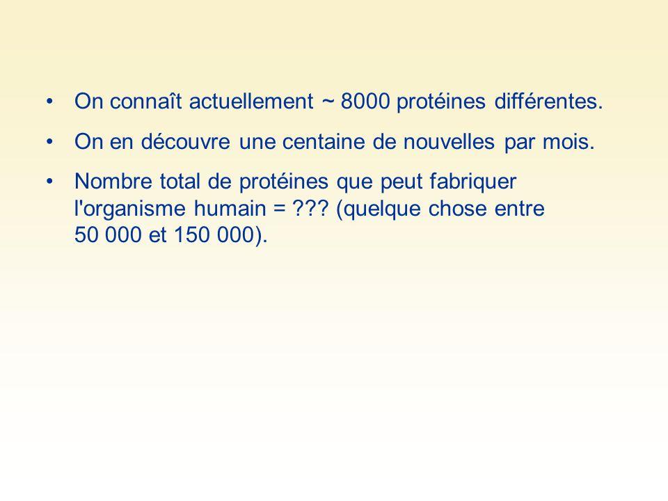 On connaît actuellement ~ 8000 protéines différentes.