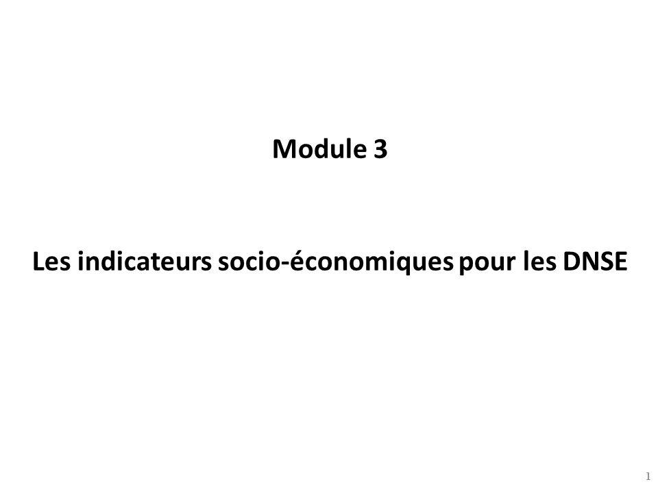 Module 3 Les indicateurs socio-économiques pour les DNSE