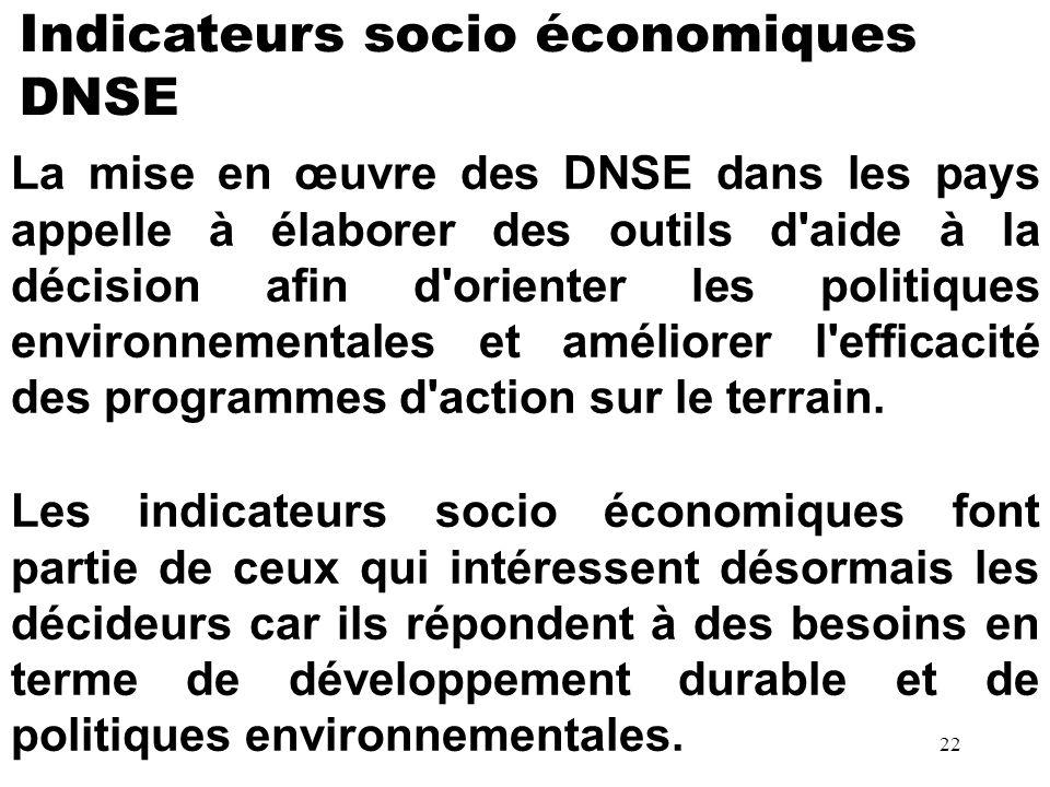 Indicateurs socio économiques DNSE