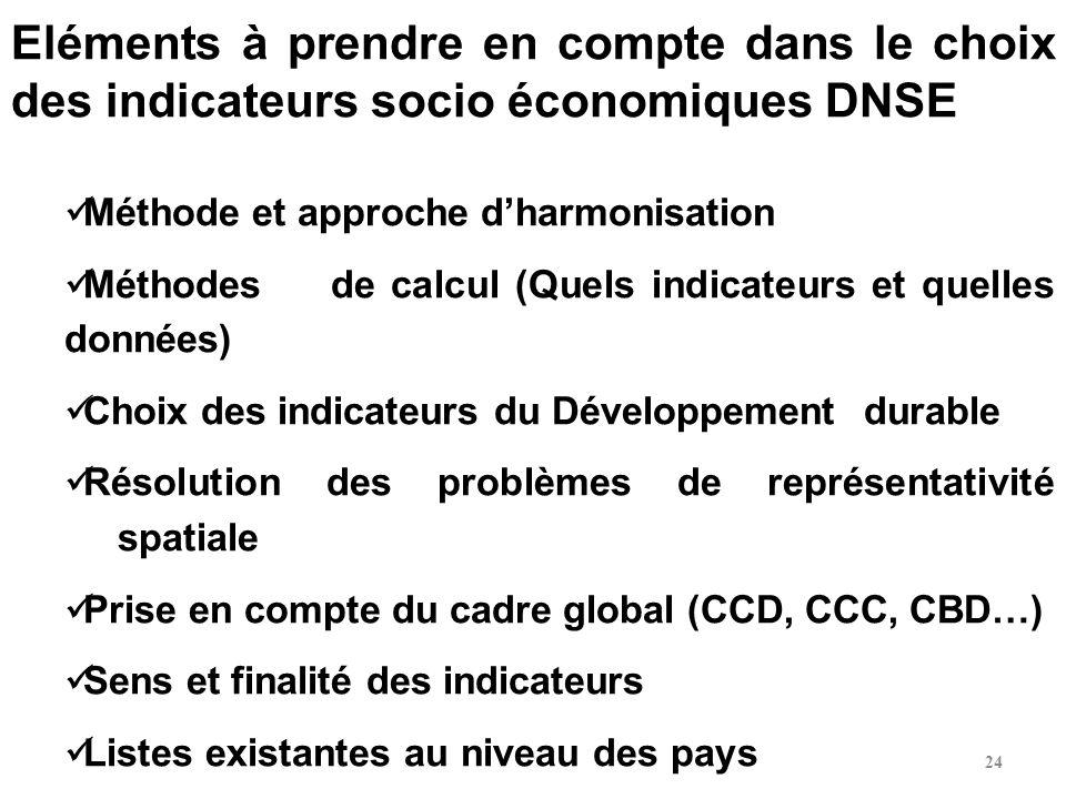 Eléments à prendre en compte dans le choix des indicateurs socio économiques DNSE
