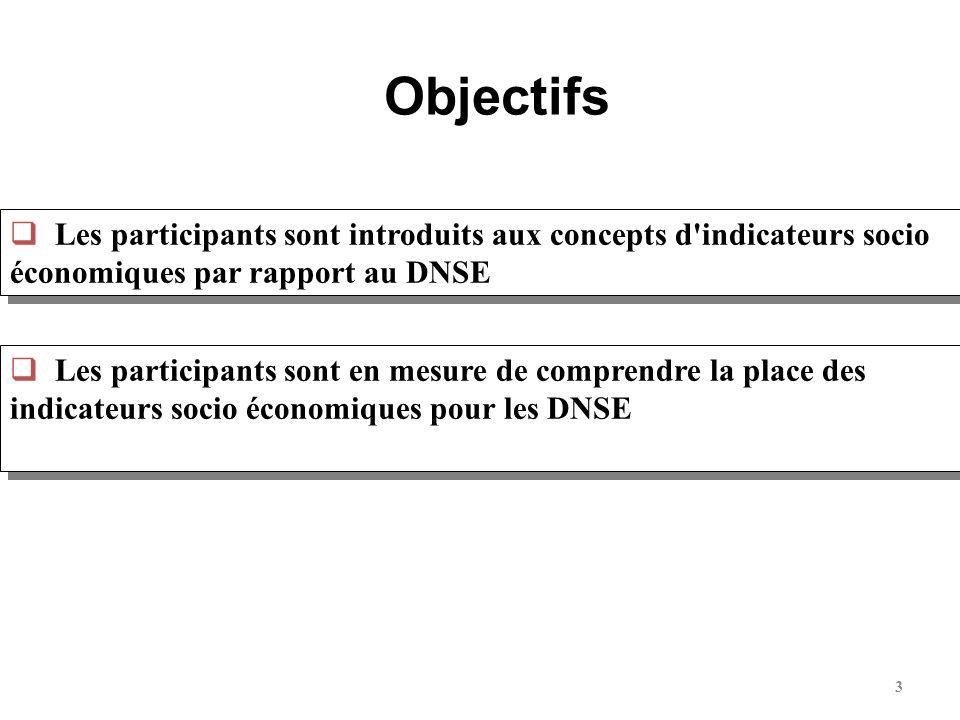 Objectifs Les participants sont introduits aux concepts d indicateurs socio économiques par rapport au DNSE.