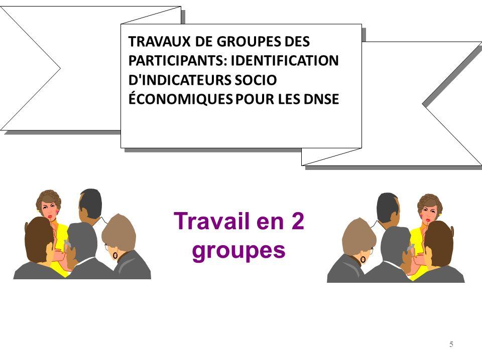 TRAVAUX DE GROUPES DES PARTICIPANTS: IDENTIFICATION D INDICATEURS SOCIO ÉCONOMIQUES POUR LES DNSE