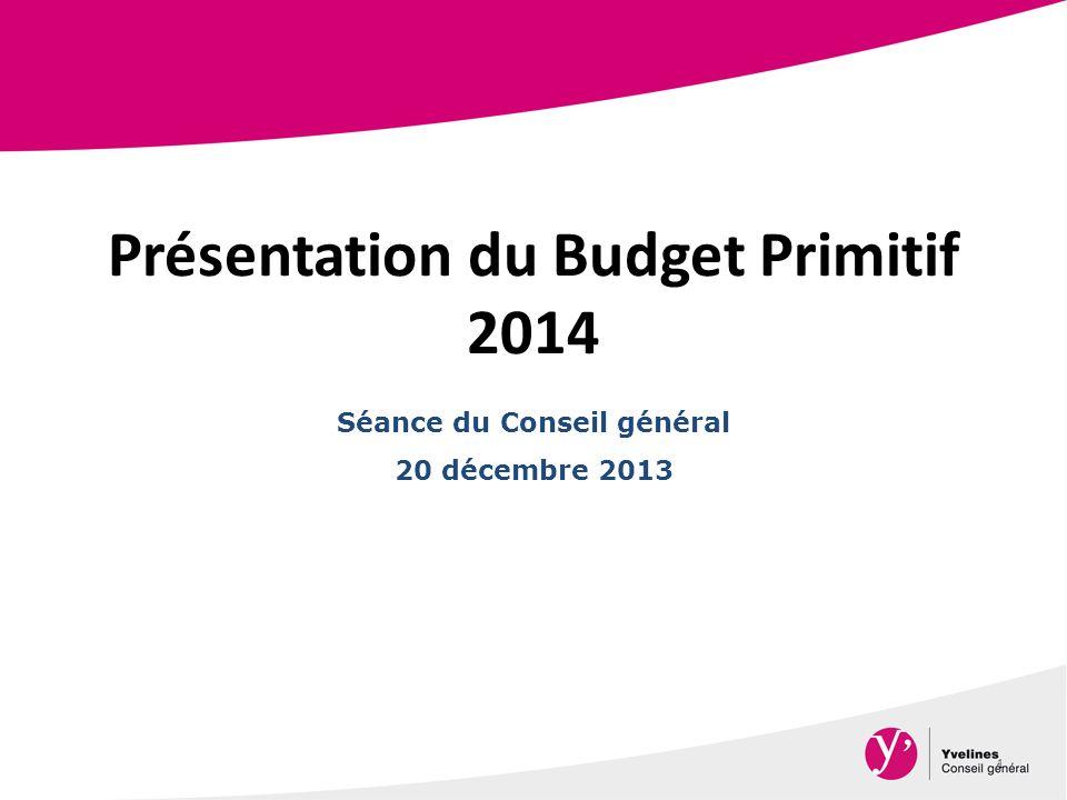 Présentation du Budget Primitif 2014