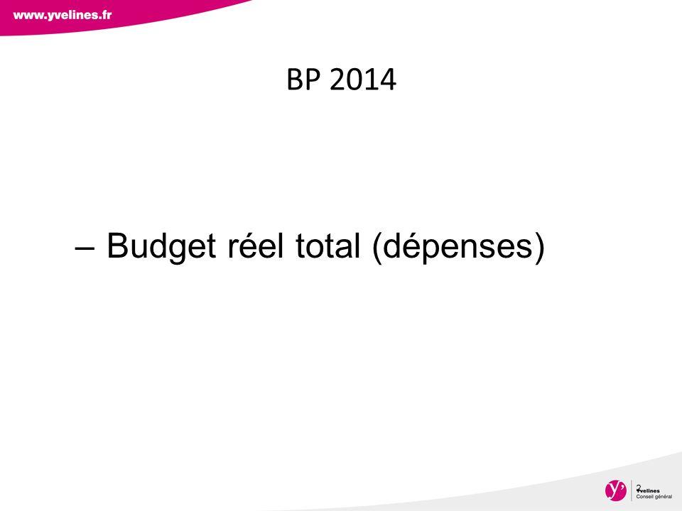 Budget réel total (dépenses)