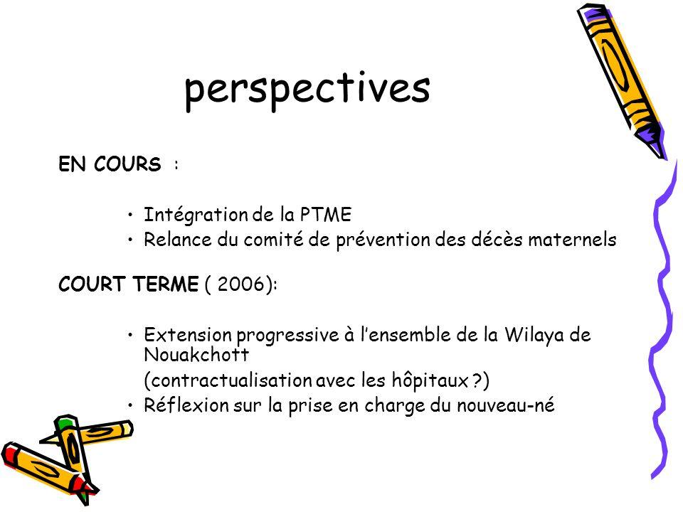 perspectives EN COURS : Intégration de la PTME