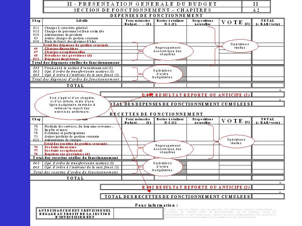 Les pages 6 et 7 présentent de manière générale l'ensemble des chapitres budgétaires de dépenses et de recettes par section.