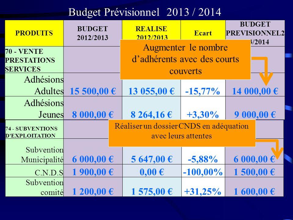 Budget Prévisionnel 2013 / 2014 Adhésions Adultes 15 500,00 €