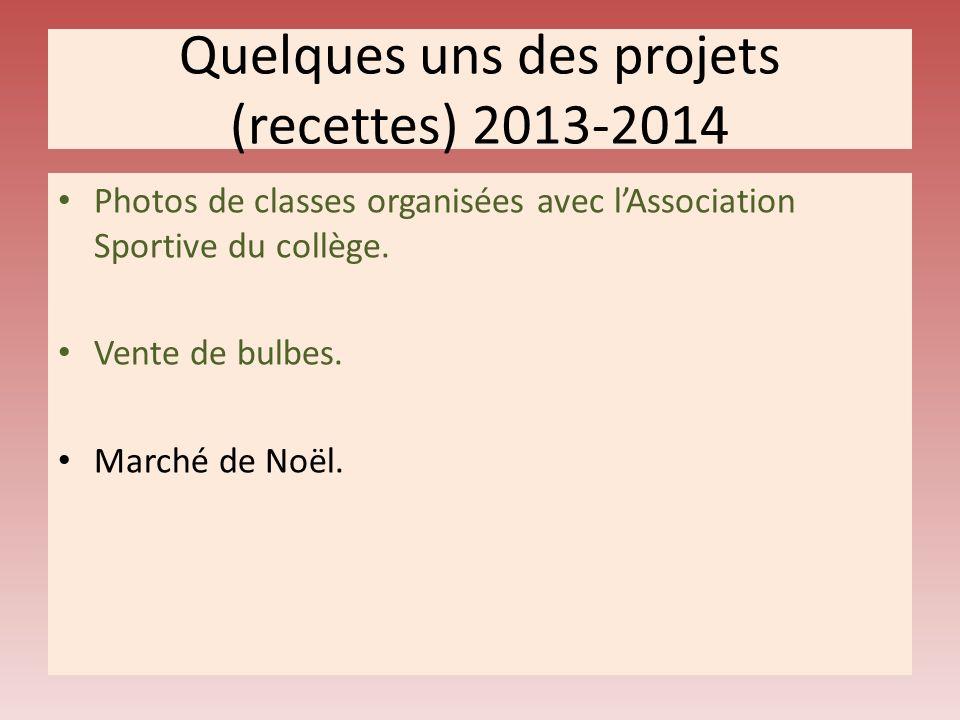 Quelques uns des projets (recettes) 2013-2014