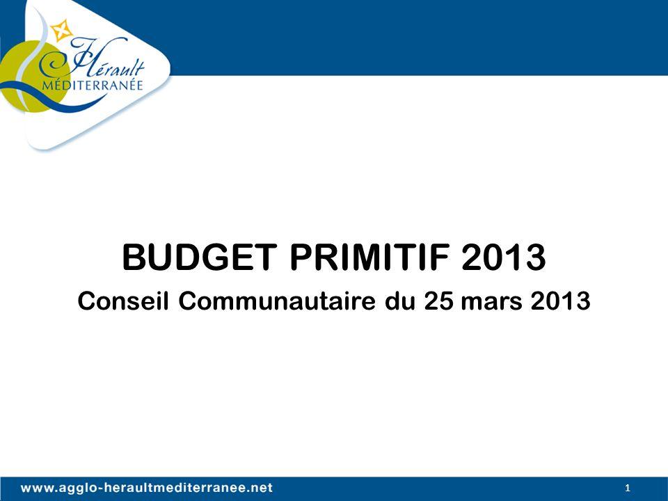 BUDGET PRIMITIF 2013 Conseil Communautaire du 25 mars 2013
