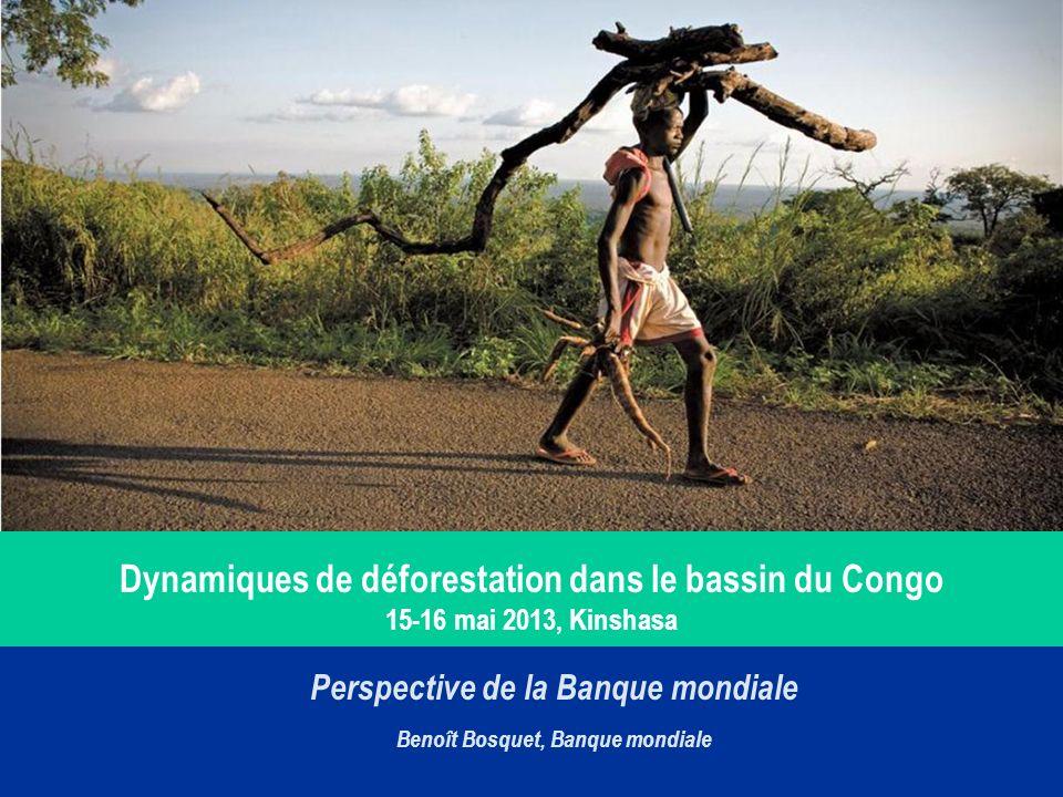 Dynamiques de déforestation dans le bassin du Congo