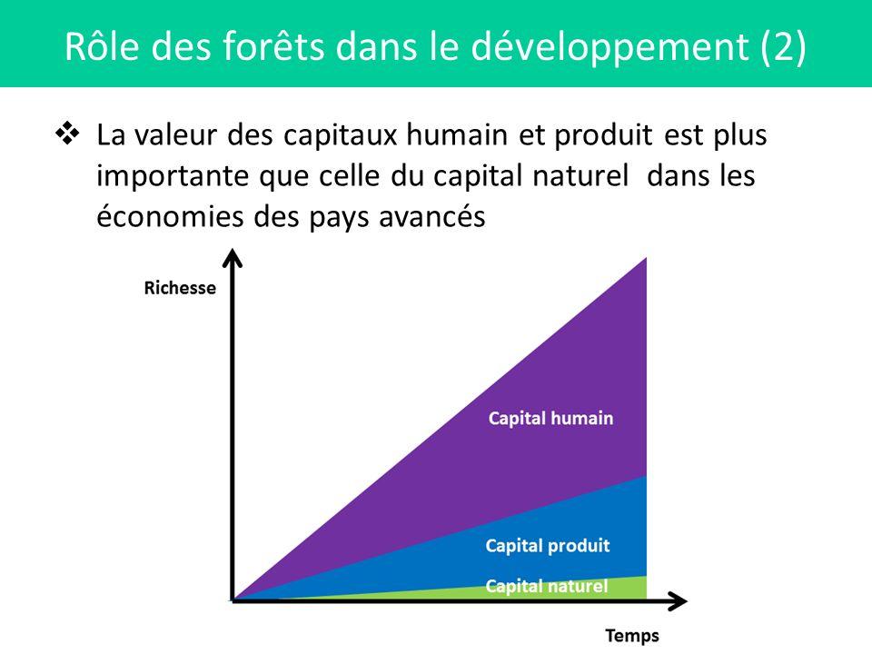 Rôle des forêts dans le développement (2)