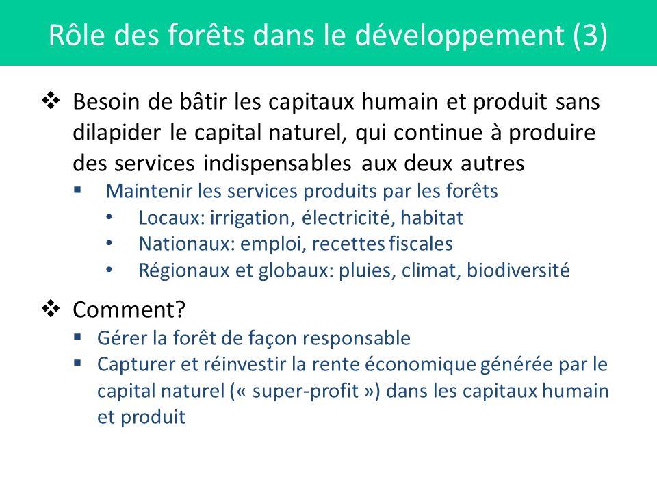 Rôle des forêts dans le développement (3)