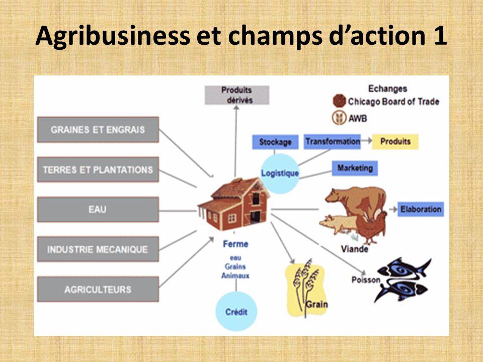 Agribusiness et champs d'action 1