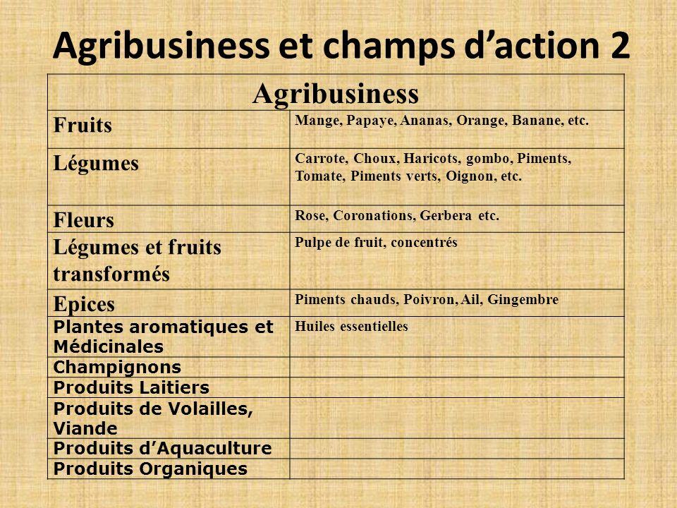 Agribusiness et champs d'action 2