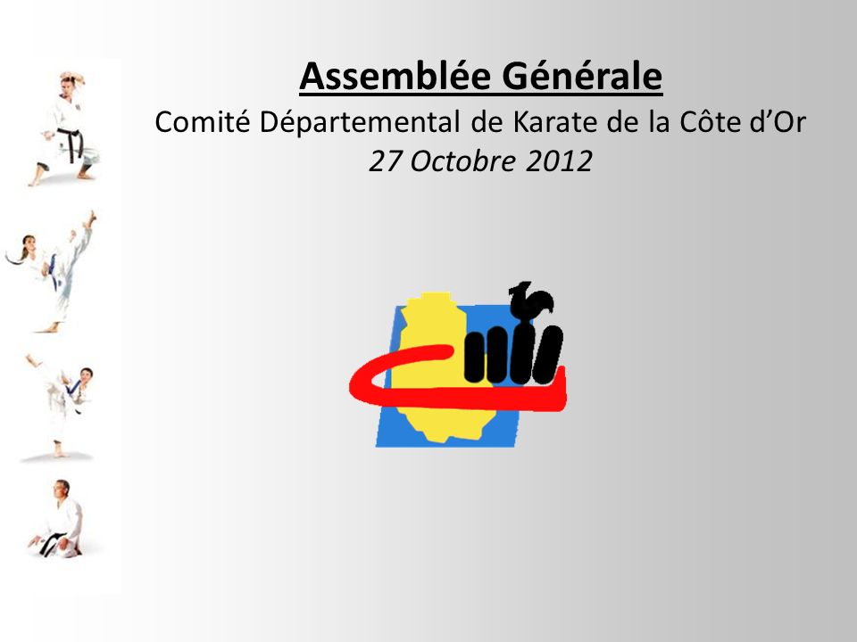 Comité Départemental de Karate de la Côte d'Or
