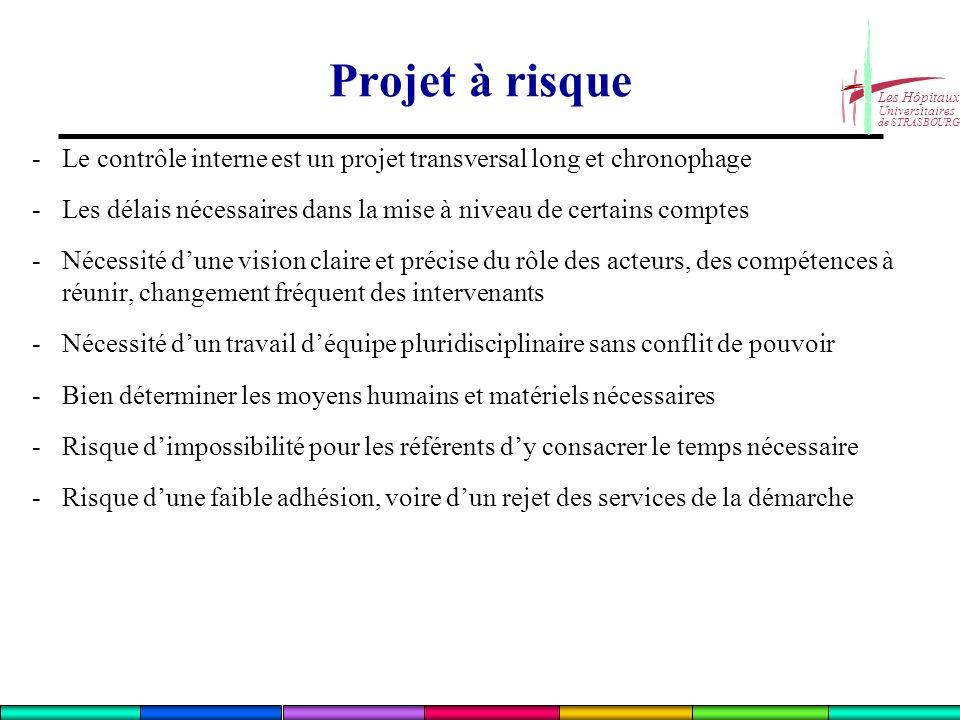 Projet à risque - Le contrôle interne est un projet transversal long et chronophage.