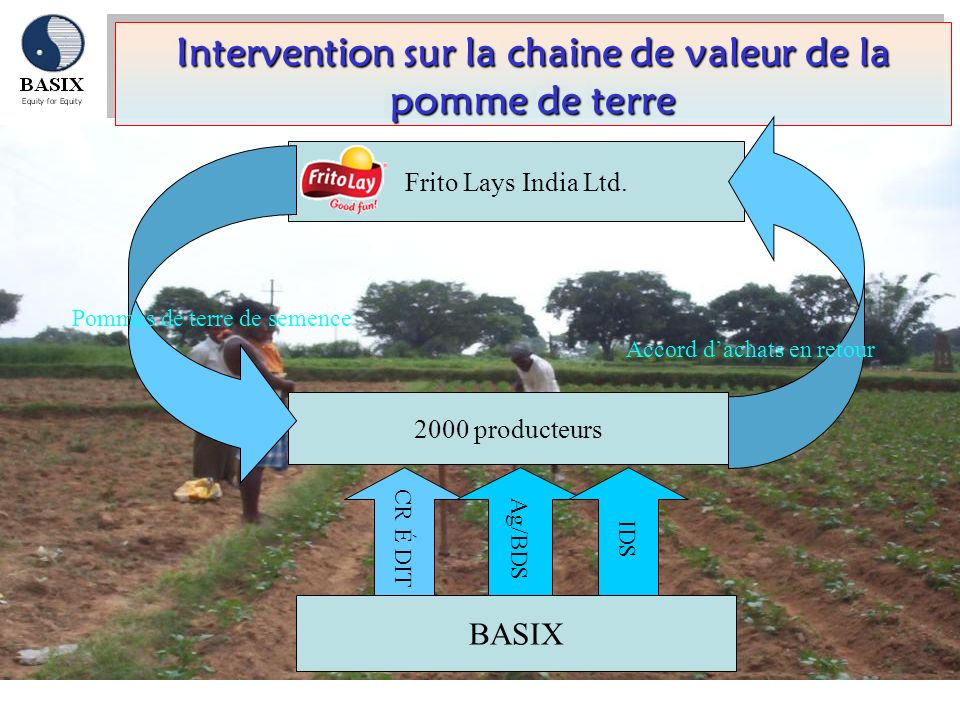 Intervention sur la chaine de valeur de la pomme de terre