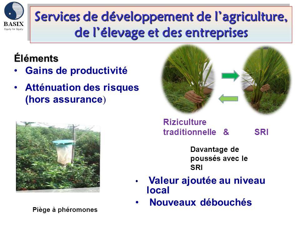 Services de développement de l'agriculture, de l'élevage et des entreprises