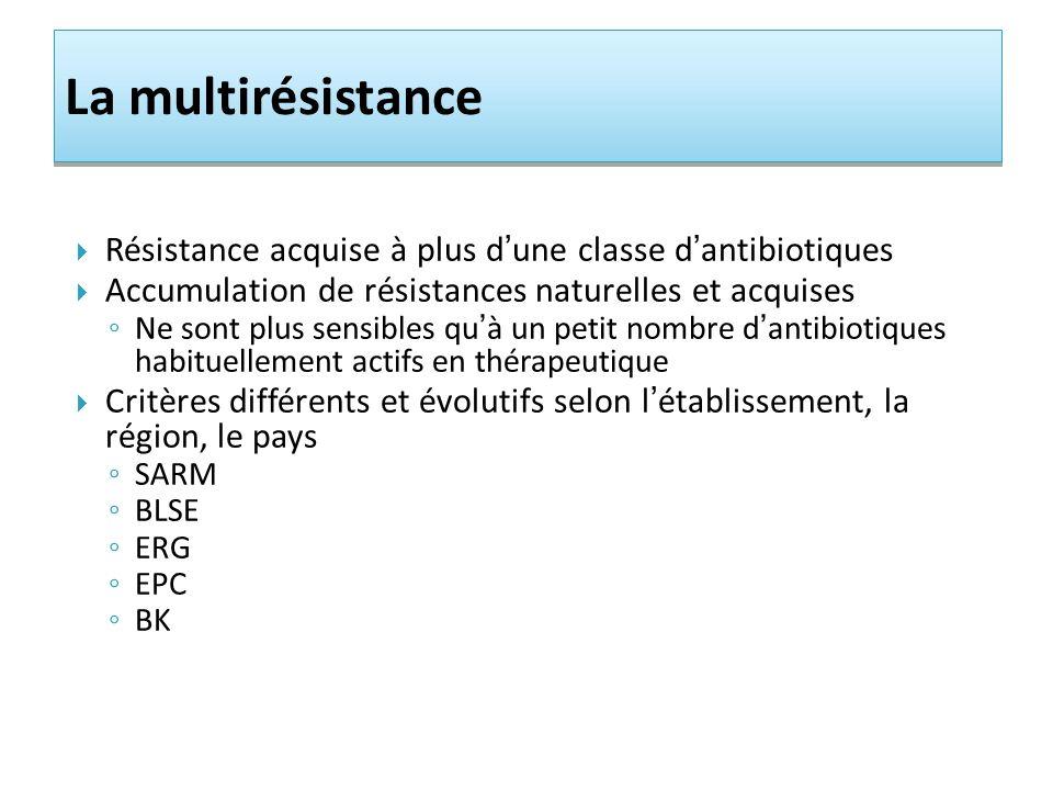 La multirésistance Résistance acquise à plus d'une classe d'antibiotiques. Accumulation de résistances naturelles et acquises.