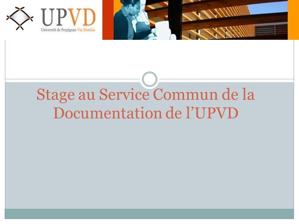 Stage au Service Commun de la Documentation de l'UPVD
