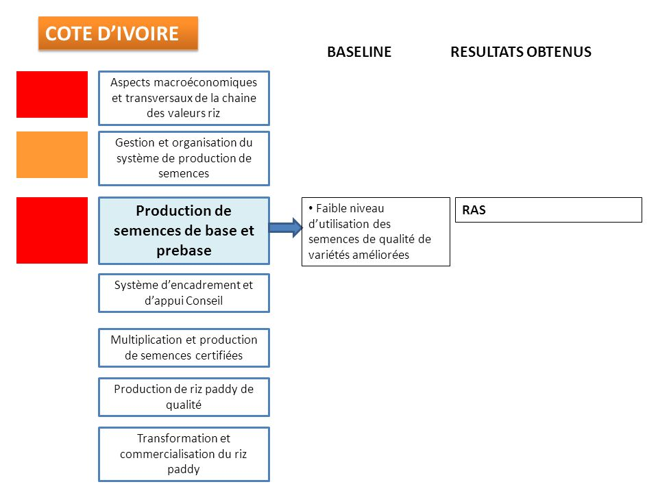 Production de semences de base et prebase