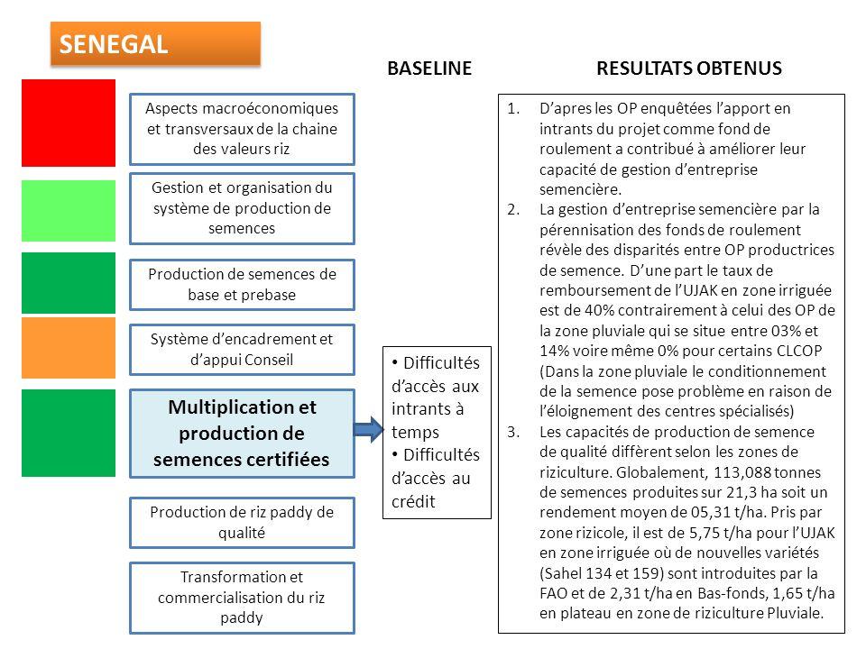 Multiplication et production de semences certifiées