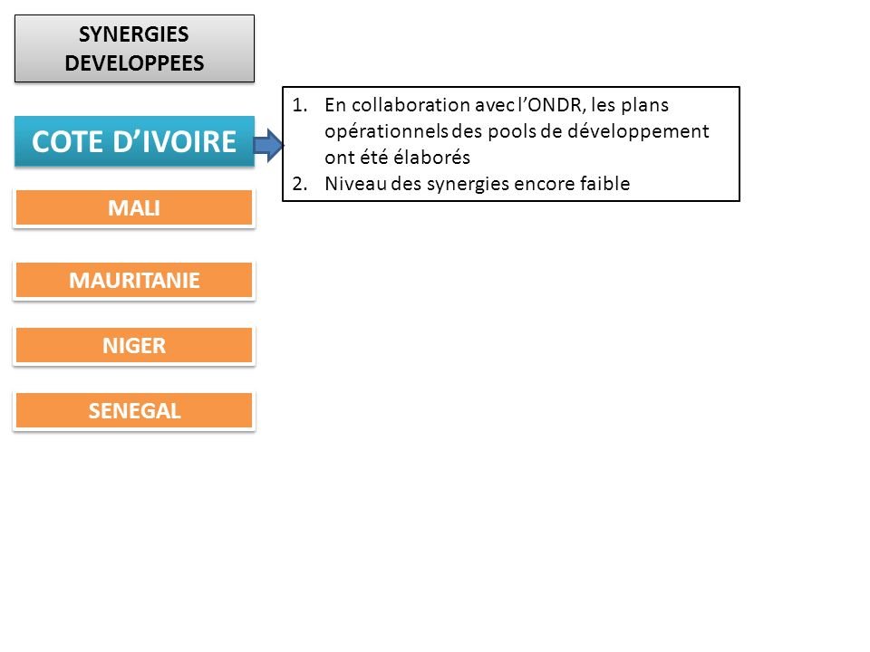 SYNERGIES DEVELOPPEES