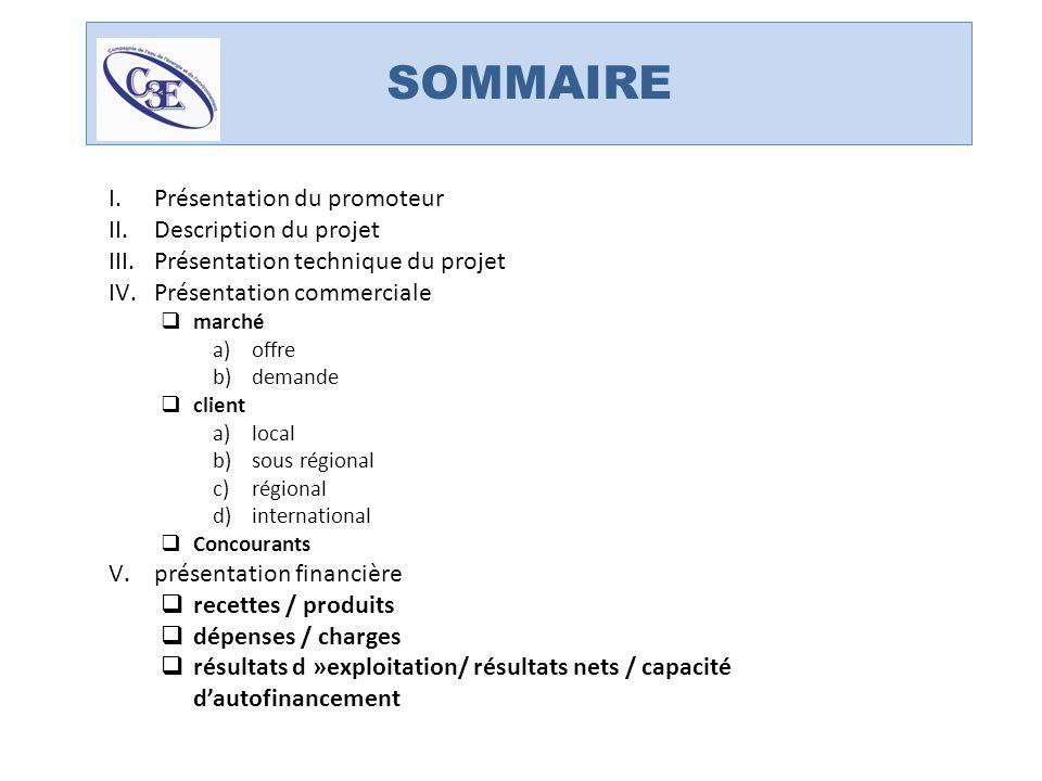 SOMMAIRE Présentation du promoteur Description du projet