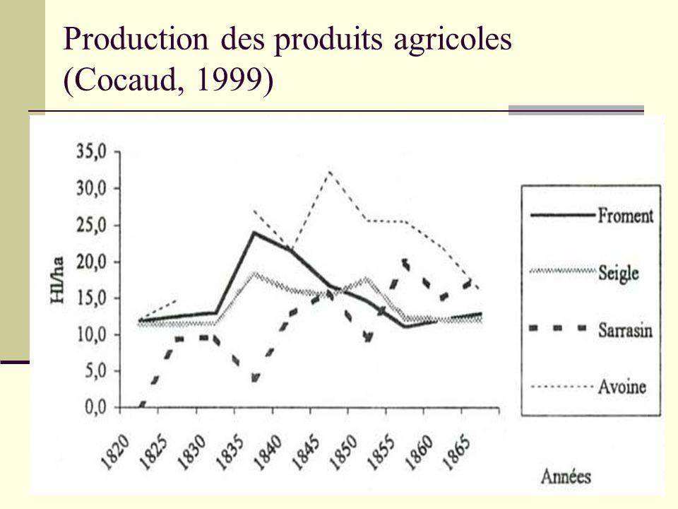 Production des produits agricoles (Cocaud, 1999)